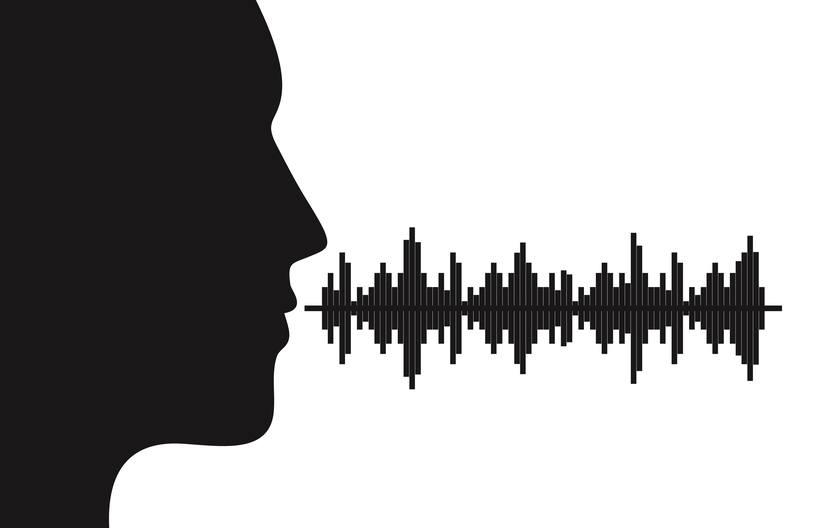 voice quality intelligibility